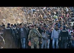 Enlace a La estafa de los refugiados