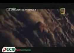 Enlace a Los quipus, el enigmático sistema aritmético y de escritura del imperio inca
