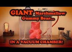 Enlace a El aspecto terrorífico de un oso de goma al meterlo al vacío