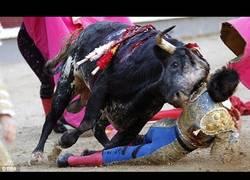 Enlace a BRUTAL: Este novillero es cogido de forma espeluznante por un toro