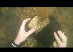 Enlace a Creía haber encontrado un objeto muy valioso bajo el río y se dio cuenta que era algo terrible