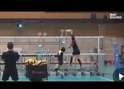 Enlace a El equipo de voleibol de Japón entrenando contra robots bloqueadores