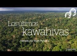 Enlace a Al descubierto una trama genocida para abrir el territorio de una tribu amazónica no contactada