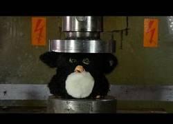 Enlace a Así de horroroso queda un Furby tras pasar la prueba de la prensa hidráulica
