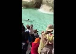 Enlace a Turista se baña desnudo en la Fontana di Trevi