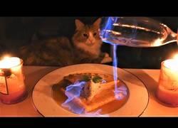Enlace a Este japonés cocina unas deliciosas crepes mientras sus gatos no pierden ojo de la receta