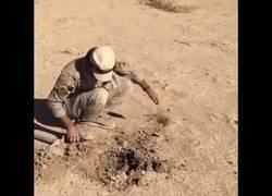 Enlace a Este tipo desactiva minas con un arte y arriesgándose al máximo