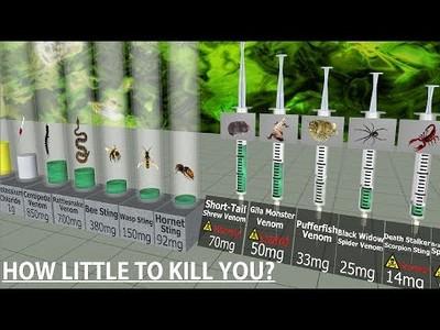 Comparando niveles te toxicidad. ¿Cuánto se necesita para morir?
