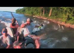 Enlace a El sitio más loco para ir a pescar carpas