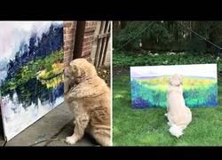 Enlace a Este perro ama contemplar las pinturas que hace su amo