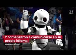 Enlace a Hay que desconectar dos robots que empezaron a crear su lenguaje y se convirtieron en una amenaza