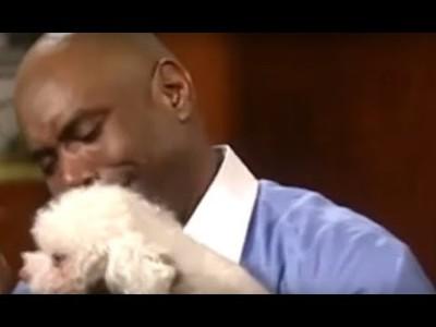 Jueza decide quién es el dueño de este perro dejándolo entrar en la sala para ver a quién se dirige