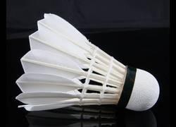 Enlace a Así se fabrica el volante de badminton