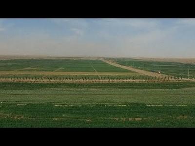 China desarrolla una tecnología para reforestar desiertos