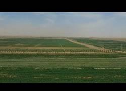 Enlace a China desarrolla una tecnología para reforestar desiertos