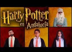 Enlace a Nunca es tarde para reinterpretar al Señor Potter