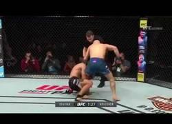 Enlace a Noqueó a su rival en la UFC pero continuó pegándole
