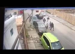 Enlace a Fueron a robar en plena calle a la persona equivocada