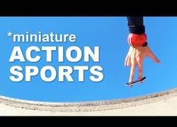 Enlace a Los deportes más divertidos en versión diminuta