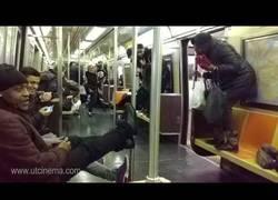 Enlace a Pánico total en el metro de Nueva York por el animal que se coló