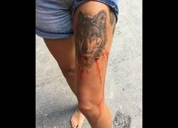 Enlace a Una turista graba en Australia el ataque de un cocodrilo a su amiga