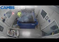 Enlace a El gran peligro de trabajar en una fábrica de basura