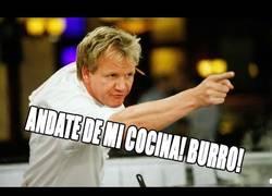 Enlace a Los enfados más locos de Gordon Ramsay