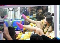 Enlace a La sorpresa que nos espera dentro de las máquinas expendedoras de Corea