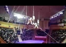 Enlace a La tremenda caída de un acróbata en mitad de un espectáculo en el circo