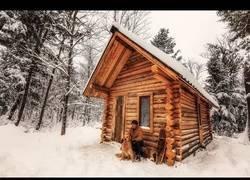Enlace a Este tío graba como se construye de cero una casa de madera en mitad del bosque