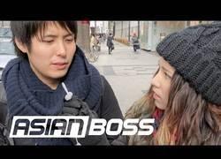 Enlace a Jovenes japoneses opinan sobre Logan Paul (subs disponibles)