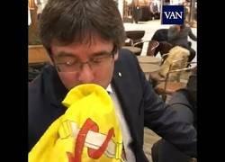 Enlace a Un español trolea Puigdemont para que besa la bandera española