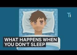 Enlace a Esto es lo que le pasa a tu cerebro si duermes menos de 6 horas al día