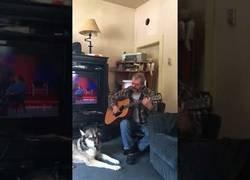Enlace a Este perro canta mientras su dueño toca un tema con la guitarra