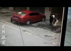 Enlace a Cae un perro del cielo y deja inconsciente a una mujer en plena calle mientras paseaba