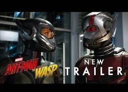 Enlace a Marvel sigue on fire y saca el primer tráiler de Ant-Man and The Wasp