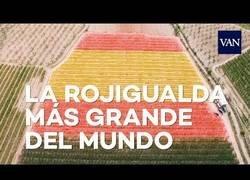 Enlace a Dos hectáreas de bandera española, la más grande del mundo