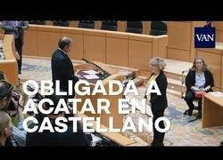 Enlace a España, siglo XXI. Obligada a acatar la Constitución en castellano