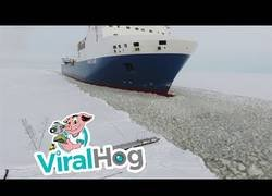 Enlace a Como quien pilla un taxi en un mar totalmente congelado