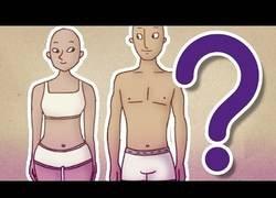 Enlace a ¿Somos iguales mujeres y hombres?