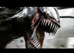 Enlace a 8 cosas que no sabías de Venom