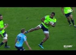 Enlace a Cuando juegas rugby pero tu verdadera pasión son las artes marciales