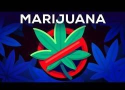 Enlace a Tres argumentos por los que la marihuana debería seguir siendo ilegal