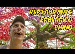 Enlace a Jabiertzo nos habla sobre el megarrestaurante ecológico situado en China