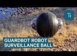 Enlace a Crean un robot capaz de desplazarse por cualquier terreno
