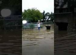 Enlace a Creo que no es la mejor manera para luchar contra las inundaciones