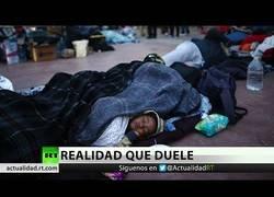 Enlace a Los juicios que sufren los inmigrantes