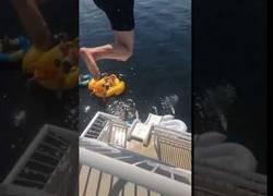 Enlace a Trata de saltar desde su barco al agua y nada sale como esperaba