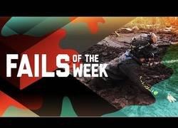 Enlace a Recuerda ponerte siempre el casco: los mejores fails de la semana
