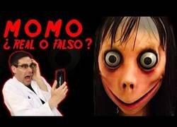 Enlace a ¿Momo es real?